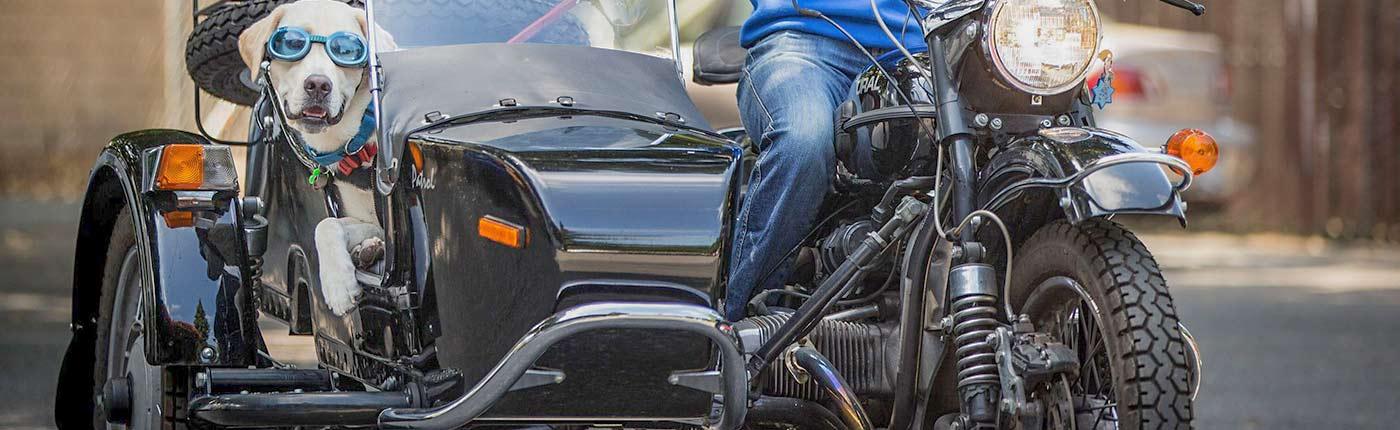Ural Motorcycle Las Vegas BBV Powersports